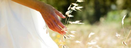 Billede af en kvinde stående i et felt. Billedet viser, hvordan vi arbejder for en bæredygtig udvikling og beskytte miljøet.